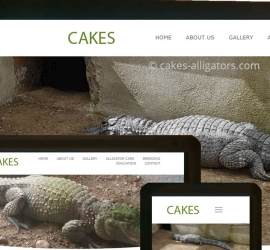Screenshots of CAKES Alligator's new website
