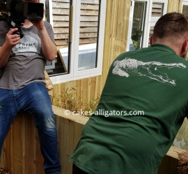 TV crew filming introduction of male and female Chinese Alligators