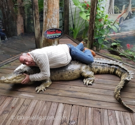 Posing with a fake Alligator